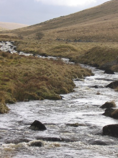 West Okement river