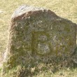 Boundary Stone, Sourton Tors