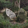 Teign Valley sculpture