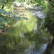 River Fal at Golden