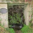 St Piran's Well, Perranarworthal