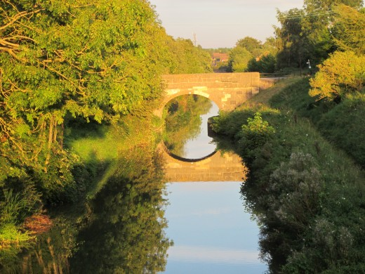 Canal, evening light near Devizes