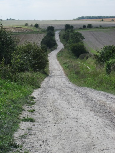 Byway across the Downs, towards Avebury