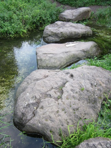 Stepping stones near Swallowhead Spring