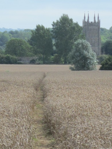 Path towards Mells Church