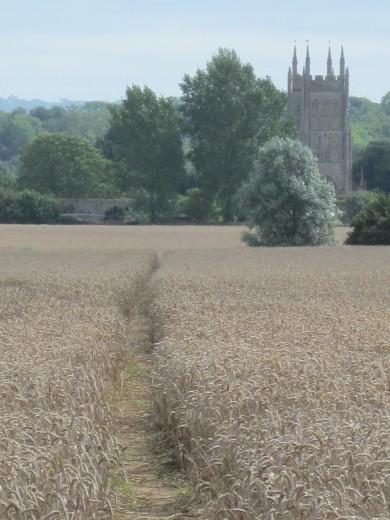 Path towards Mells Church
